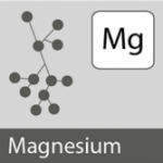 Importance of Magnesium Supplement